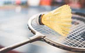 Picture the game, racket, badminton, flounce, birdies