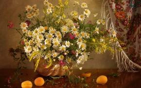 Wallpaper apricot, basket, chamomile, shawl