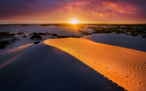 Picture sand, sunset, dunes, Australia, South Australia, Kangaroo Island, Vivonne Bay, Little Sahara