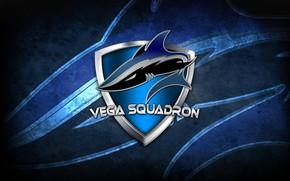 Picture CS GO, Esports organization, Vega Squadron, Russian team