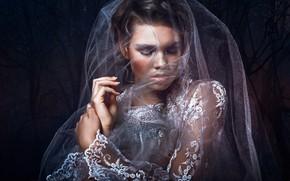 Picture style, the bride, veil, lace, Bella Kotak