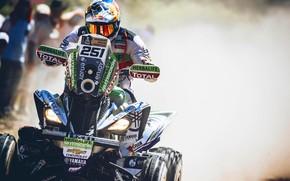 Picture ATV, Yamaha, Raptor, Rally, Dakar, Dakar, Rally, Yamaha, Yamaha Raptor, 251