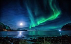 Picture sea, the sky, mountains, night, stones, rocks, the moon, coast, stars, Northern lights, Norway, Lofoten, …
