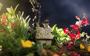 Picture light, flowers, snail, house