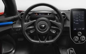 Picture McLaren, the wheel, salon, 2018, Senna