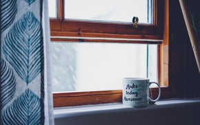 Picture winter, tree, tea, window, mug, blind, winter, window, tea
