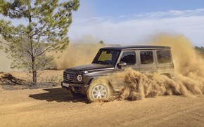 Picture tree, Mercedes-Benz, speed, dust, 2018, G-Class