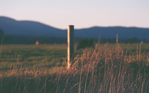 Picture grass, hills, fence, countryside