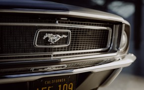 Picture Mustang, Ford, Auto, Retro, Machine, Ford, Grille, Horse, Logo, Art, Fastback, 1968, Ford Mustang GT, ...