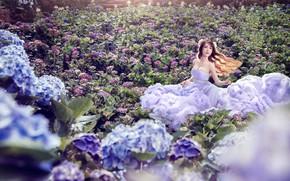 Picture Flowers, Asian, Dress, Hydrangea, Girl