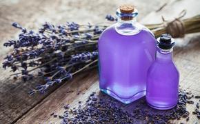 Wallpaper lavender, lavender, purple, spa, oil