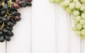 Picture berry, grapes, bunches