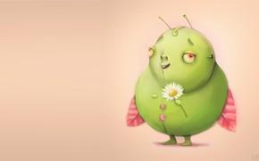Picture bug, Daisy, art, beetle, children's, Beehive Wigierska