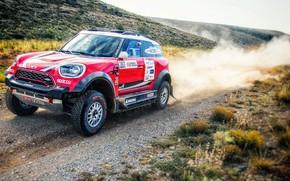 Picture Mini, Dust, Sport, Speed, Race, Rally, SUV, Rally, 207, X-Raid Team, MINI Cooper, X-Raid, X …