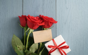 Picture red roses, romantic, gift, Valentine's Day, bouquet, roses, red