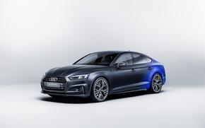 Picture Audi, Audi, white background, Sportback