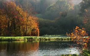 Picture autumn, landscape, France, Normandy, nature, france, autumn, landscape, normandie, fall