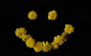 Picture flower, smile, smiley