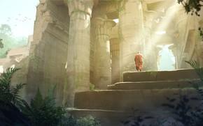 Picture birds, monk, temple, staff, Munk