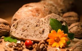 Picture briar, bread, nuts