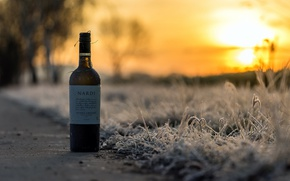 Picture sunset, wine, bottle