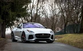 Picture Jaguar, Road, F-Type, SVR