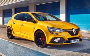 Picture Renault, hatchback, 2018, Trophy, Megane RS