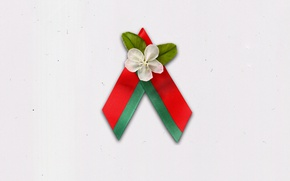 Wallpaper May 9, Symbol, Belarus, Apple blossoms, Flowers Of The Great Victory, Belarusian Republican youth Union