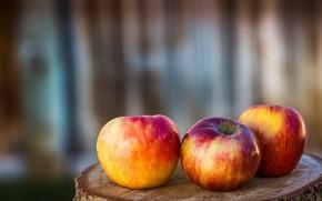 Picture apples, stump, three apples