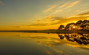 Picture trees, sunset, lake, reflection, England, England, Hampshire, Hampshire, Hatchet Pond, Pond Hatchet