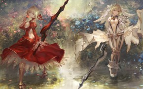 Picture weapons, girls, anime, the saber, fate/grand order