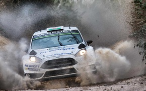 Picture squirt, Ford, WRC, Rally, Fiesta