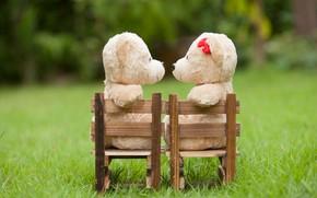 Picture love, toy, bear, pair, love, two, bear, park, kiss, romantic, teddy, cute