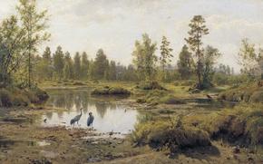Picture landscape, birds, nature, picture, Heron, Ivan Shishkin, Swamp. Polesie