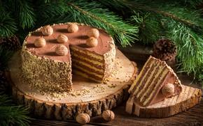 Picture cake, nuts, cream, dessert, wood, chocolate, chocolate, dessert, nutty