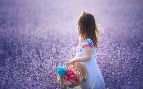 Picture flowers, mood, meadow, girl, basket