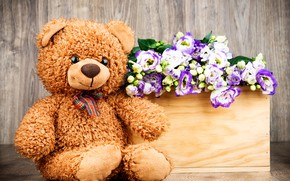 Picture flowers, gift, bouquet, bear, love, flowers, romantic, gift, teddy bear