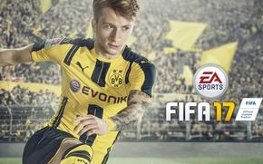 Picture sport, logo, stadium, man, football, tatoo, crowd, Fifa, player, Electronic Arts, fans, EA Sports, Borussia …