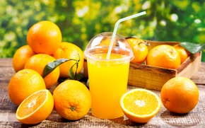 Wallpaper Orange, Citrus, Juice, Glass, Food