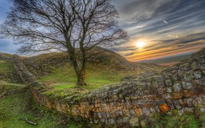 Wallpaper Hadrians Wall, stones, sunset, grass, HDR, the sun, hills, UK, Hadrian's Wall, tree, Hadrian's Wall, ...