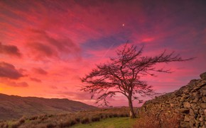 Picture clouds, mountains, stones, tree, the fence, England, glow, Cumbria