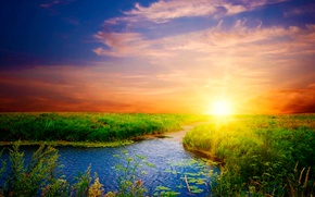 Picture greens, the sky, sunset, river, shore