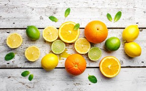 Picture lemon, orange, lime, citrus, mint