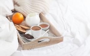 Picture chocolate, Breakfast, milk, cookies, honey, tray, coffee in bed, Valeria Maksakova