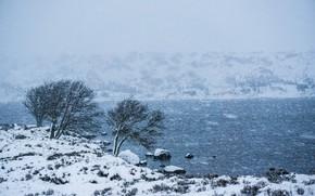 Picture winter, snow, river, Blizzard