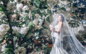 Picture flowers, style, model, Asian, the bride, veil, wedding dress