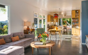 Picture interior, kitchen, living room, dining room, mid-century modern