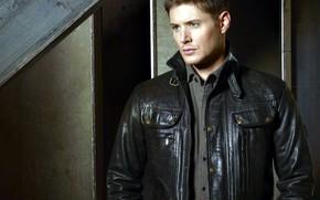 Picture guy, actor, Supernatural, supernatural, jensen ackles, Jensen ackles