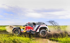Picture Sport, Speed, Race, Dirt, Peugeot, Lights, Red Bull, Rally, Rally, Sport, Total, DKR, 3008, Silk …