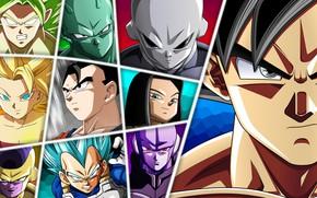 Picture game, alien, anime, manga, Son Goku, Vegeta, Dragon Ball, Goku, Small, Gohan, Hit, Freeza, Dragon …